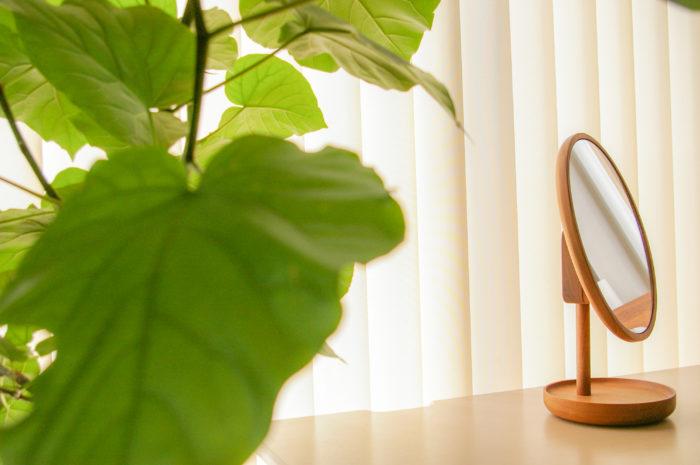 室内にある観葉植物とその向こうにある置き鏡です。