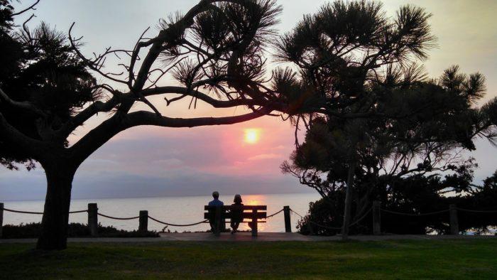 今にも沈もうとする海辺で、二人の男女がベンチに腰掛けて夕日を眺めています。木々のシルエットの中に入り込んだ男女は、更に美しいシルエットを浮かび上がらせています。